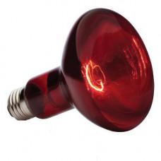 Лампа накаливания инфракрасная зеркальная ИКЗК 250вт ЗК 220-250 E27 красная